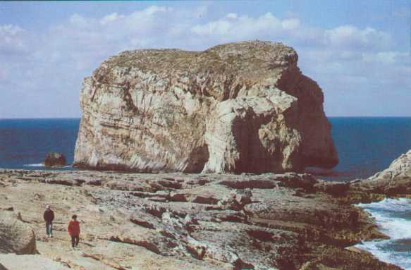 Gozo rock.jpg (26976 Byte)